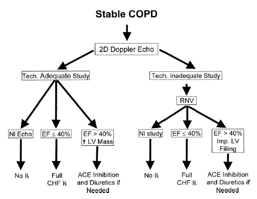 chronic obstructive pulmonary disease 2 essay Vol 390 september 2, 2017 chronic obstructive pulmonary disease 1 what does endotyping mean for treatment in two papers about chronic obstructive pulmonary.